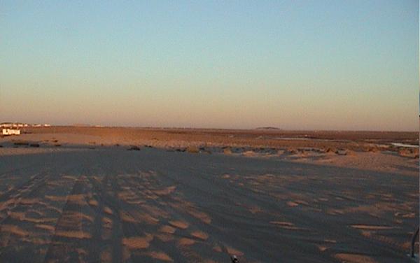 Sand Dune Grasses View Along Las Conchas